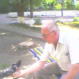 Анатолий, 66 лет, Коростень