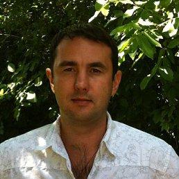 Александр, 41 год, Шпола