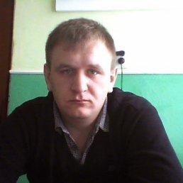 Фото Ярослав, Васильков, 29 лет - добавлено 7 апреля 2015