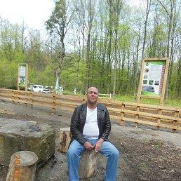 Виталий, 43 года, Бершадь