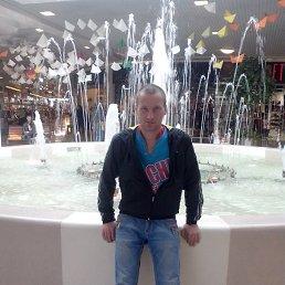 Миша, 30 лет, Светогорск