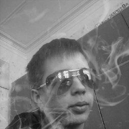 серёга, 24 года, Михайлов