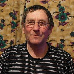 Александр, 64 года, Порхов