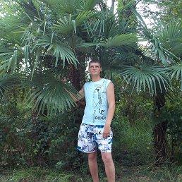 Анатолий, 41 год, Андреаполь