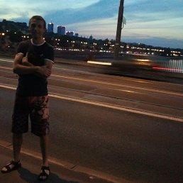 Богдан, 37 лет, Рогатин