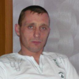 Сергей, 42 года, Красный Холм