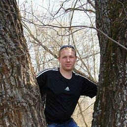 Виталий, 30 лет, Ахтырка