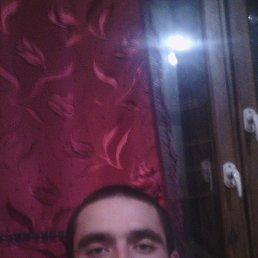 дмитрий, 28 лет, Лозовая