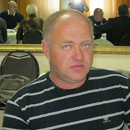 Дмитрий, 54 года, Бородино