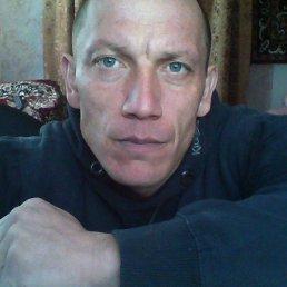 владимир, 42 года, Липовец