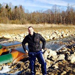 Андрей, 41 год, Вязьма