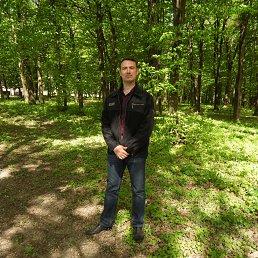 Владислав, 41 год, Бершадь