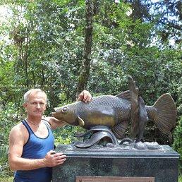 Андрей, 55 лет, Староминская