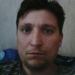 Danil, 36 лет, Шуя