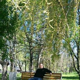 виталик, 35 лет, Донской