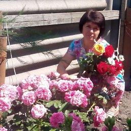 Елена, 44 года, Белокуракино