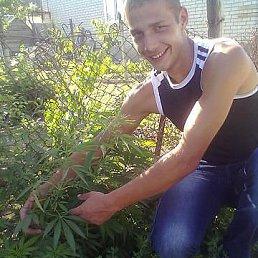 Seryy, 28 лет, Новопавловск