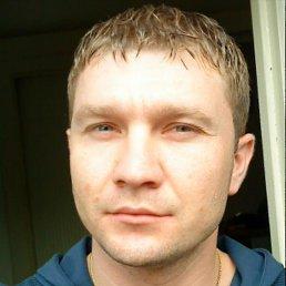 віталік, 40 лет, Збараж
