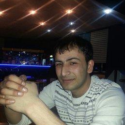 Shamshi, 29 лет, Чита