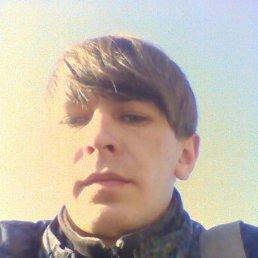 Дмитрий, 27 лет, Малин