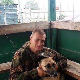 Антон, 29 лет, Аргун