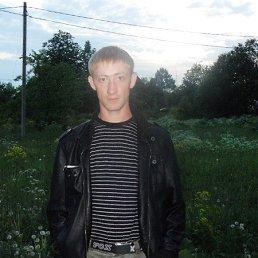 денис, 34 года, Волосово