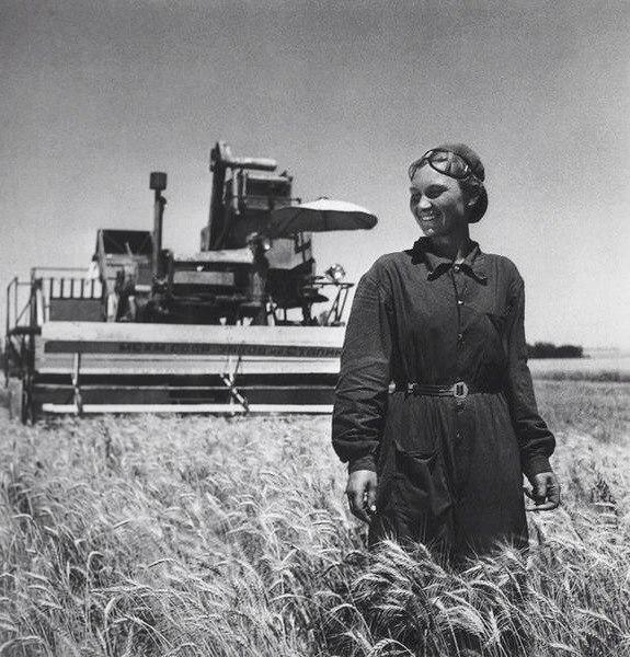 его сельское хозяйство в ссср фото важной