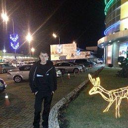 Михаил, 29 лет, Ладожская