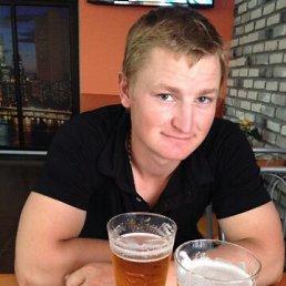 Николай, 28 лет, Калач-на-Дону