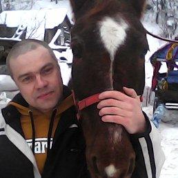 Артем, 43 года, Киров