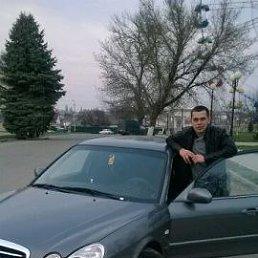 Николай, 28 лет, Староминская