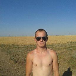 Василий, 28 лет, Николаевск