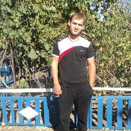 Андрей, 27 лет, Бердянск
