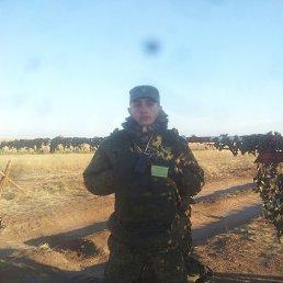 Рамзан, 27 лет, Новосибирск