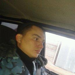 Nikolaj, Вязьма, 36 лет