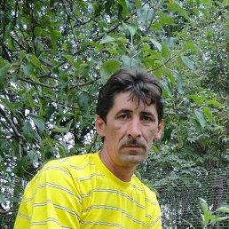 Александр, 45 лет, Сольцы