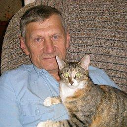 Михаил, 66 лет, Данилов