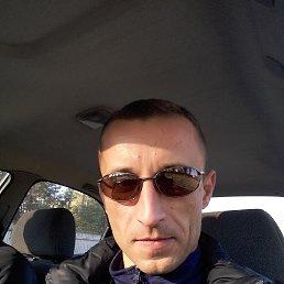 Олег, 37 лет, Городище