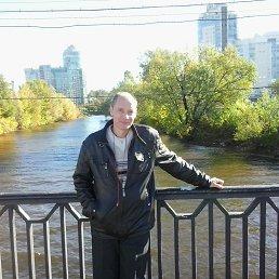 Сергей, 41 год, Малая Вишера
