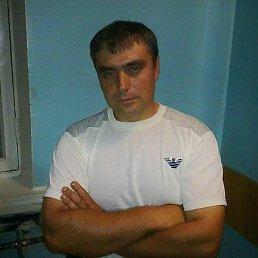 Александр, 40 лет, Северск