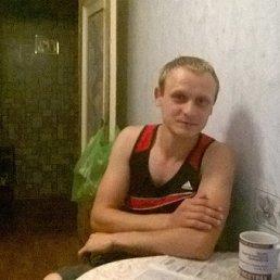 Андрей, 29 лет, Северодонецк