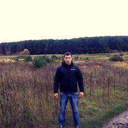 Рома, 28 лет, Владимир-Волынский
