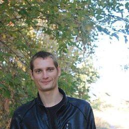 Александр, 29 лет, Пугачев
