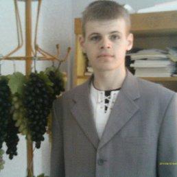 владислав, 30 лет, Тамбовка