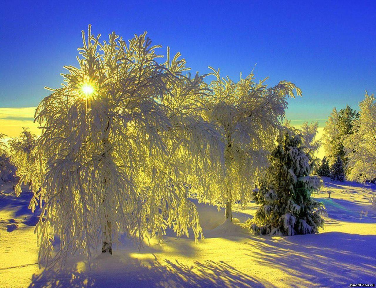 красивое фото про зимнее утро означают