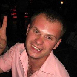Сергей, 34 года, Николаев
