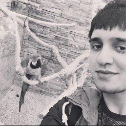 Yusup, 25 лет, Ивангород