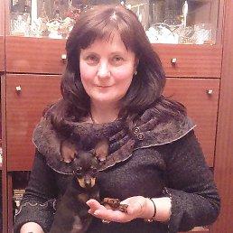 Фото Ирина, Рига, 62 года - добавлено 7 ноября 2015