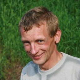 Александр, 44 года, Велиж