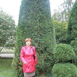 Ёлка, 49 лет, Волхов